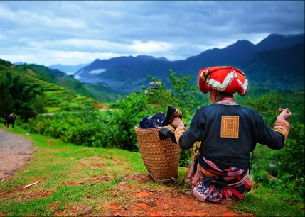 Vietnam at a Glance